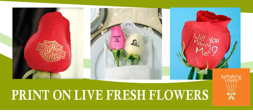 Speaking Roses Sales Franchise